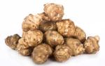 Топинамбур при панкреатите: польза земляной груши