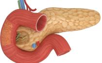 Чем рекомендуется лечить поджелудочную железу в период обострения?