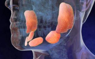 Методы диагностики слюнных желез: правила проведения процедуры