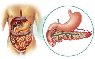Состав сока поджелудочной железы