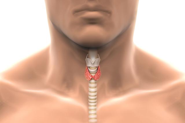 симптомы щитовидной железы