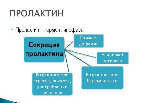 военно-медицинская академия санкт-петербург пироговская наб