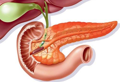 Реактивные изменения поджелудочной железы у ребенка