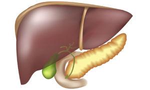 Лечение печени и поджелудочной железы: самые эффективные препараты для оптимальной терапии пациентов