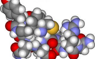 Антидиуретический гормон и его роль в оптимальном функционировании человеческого организма