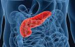 Что из повседневной еды полезно и вредно для поджелудочной железы