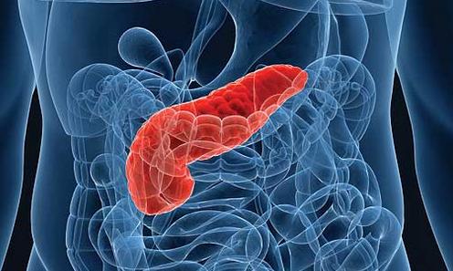 Диета для поджелудочной железы – что можно, что полезно и что вредно для поджелудочной железы?