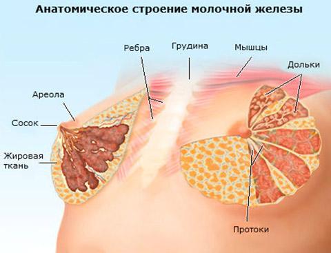 жжение в молочной железе причины
