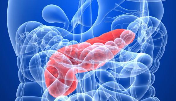 диета при панкреатите поджелудочной железы при обострении
