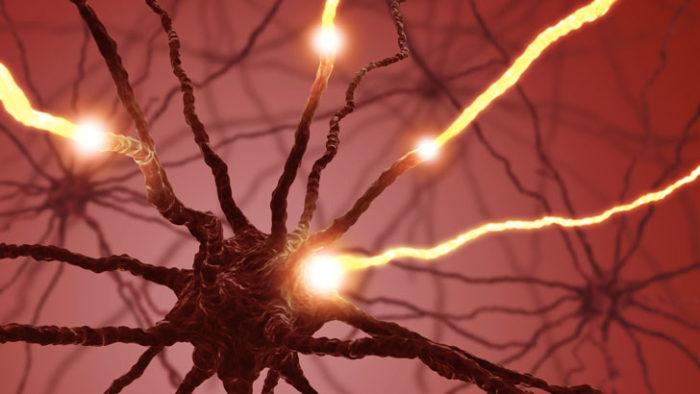 как повысить уровень серотонина в организме