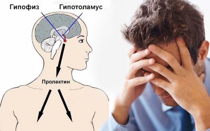 пролактин у мужчин