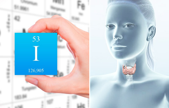 эутиреоз щитовидной железы что это такое