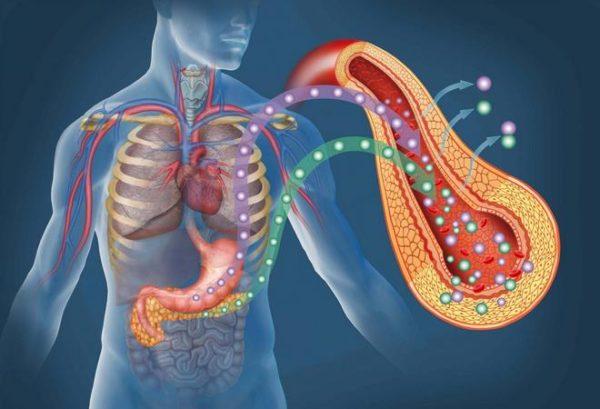 Экзокринная недостаточность поджелудочной железы